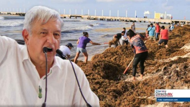 Photo of El Sargazo en Quintana Roo no es problema grave: AMLO
