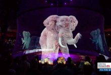 Photo of El circo animal de los hologramas 3D