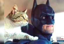 Photo of Batman salva animales de ser sacrificados