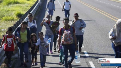 Photo of Ubican a 146 migrantes centroamericanos en carretera de Veracruz