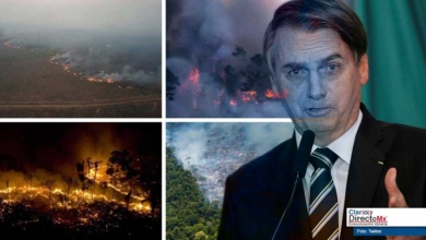 Photo of Preocupa política ambiental de Jair Bolsonaro, rompen récord en incendios forestales