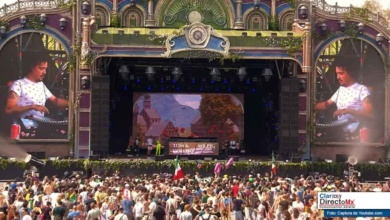 "Photo of ""El Baile del Sapito"" en el festival Tomorrowland"