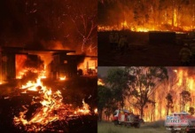 Photo of En Australia respira humo por los imparables incendios forestales