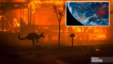 Photo of Australia cumple 4 meses de devastadores incendios