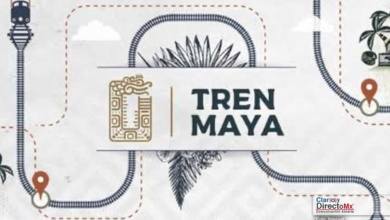 Photo of Se amparan comunidades indígenas vs el Tren Maya