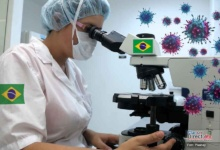Photo of Confirman en Brasil aparición de arenavirus letal