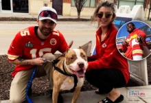 Photo of Derrik Nnandi, celebra triunfo en Super Bowl, rescatando animales abandonados