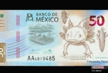 Photo of La nueva cara del billete de 50 pesos