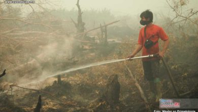 Photo of Indonesia luchará contra los incendios con lluvia artificial